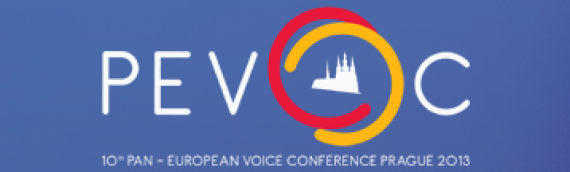 Invitation and Call-up Pevoc 2013 and CoMet Meeting